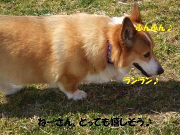 017_convert_20110228022726.jpg