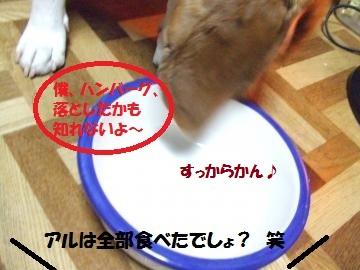 017_convert_20110308231921.jpg