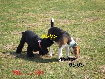 019_convert_20110228032053.jpg