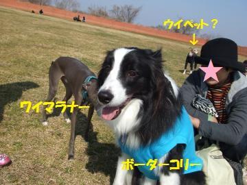 022_convert_20110228022926.jpg