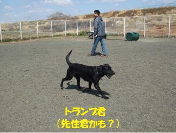 023_convert_20110328011048.jpg
