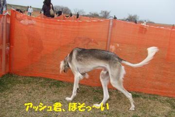 024_convert_20110307020755.jpg