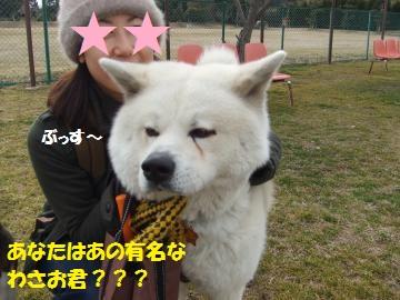 039_convert_20110224233032.jpg