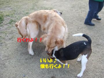 041_convert_20110219002758.jpg