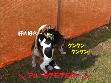 046_convert_20110302011115.jpg