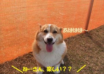 066_convert_20110302010248.jpg