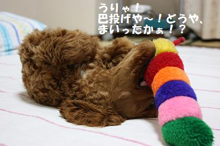 IMG_1052blog.jpg