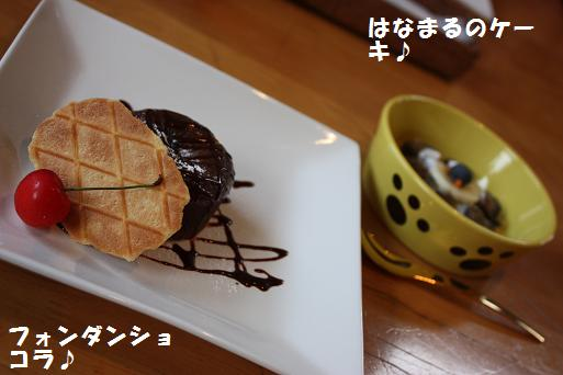 IMG_1236blog.jpg