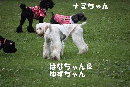 IMG_2101blog.jpg