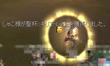 20110113a.jpg