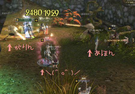 20110131b.jpg