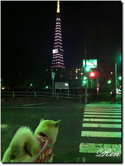 東京タワーと凛