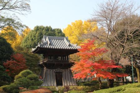 ばんな寺の秋