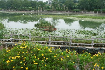 波志江沼公園