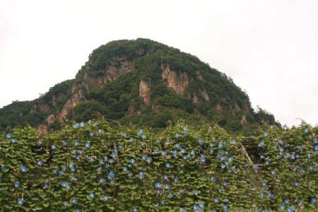 大岩フラワーガーデン