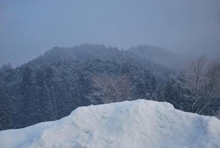2011.2.4朝 (1)
