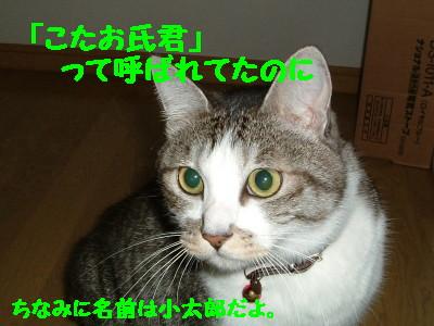 DSCF0010_1.jpg