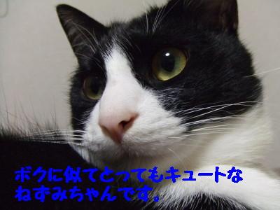 DSCF0164.jpg
