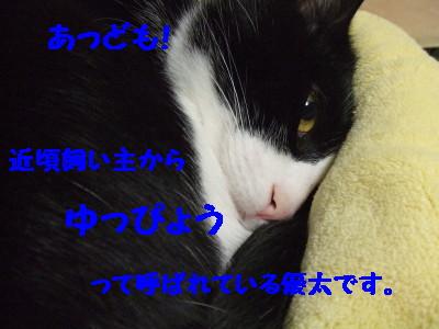DSCF0921.jpg
