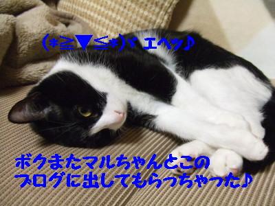 DSCF1093.jpg