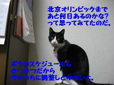 IMG_9987.jpg