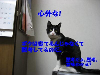 IMG_9992.jpg