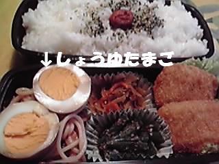 090522お弁当