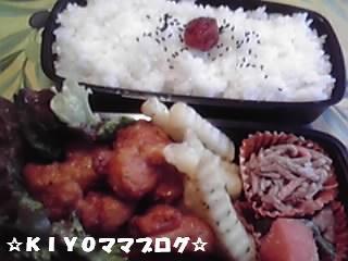 090601お弁当