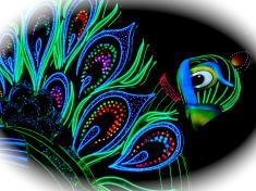 DSC00030_convert_20110403233237.jpg
