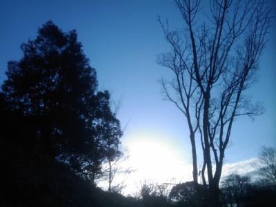 20110124-2.jpg