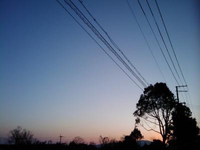 20110222-2.jpg