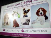 羽田ペットホテル