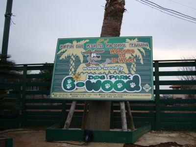 b-wood