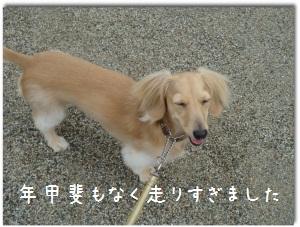 010_20110803161257.jpg