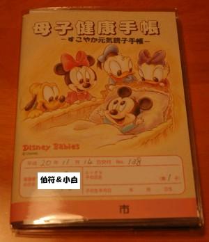20081114母子手帳(マスク).JPG