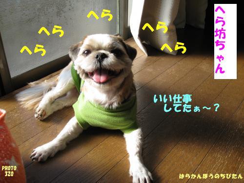 kankyo11.jpg
