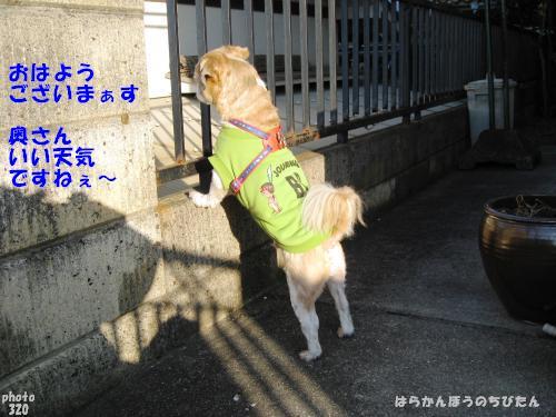 kankyo2.jpg