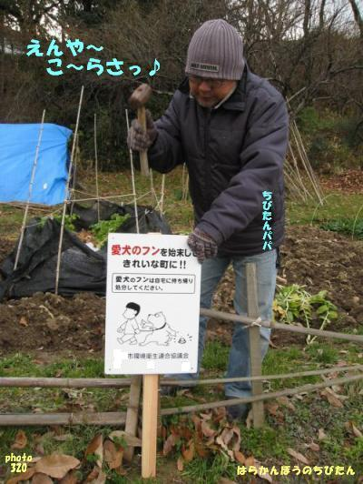 kankyo5.jpg