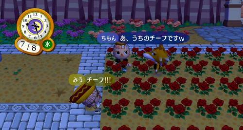 RUU_0915_convert_20090716102658.jpg