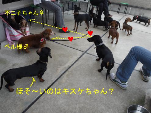 10_20110511232632.jpg