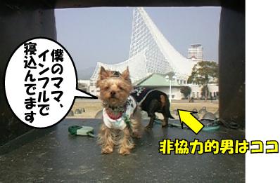 1_20110207165048.jpg