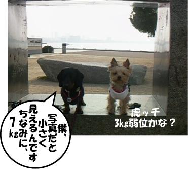 2_20110207165048.jpg