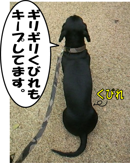 3_20110301114402.jpg