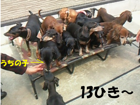 7_20110511232632.jpg