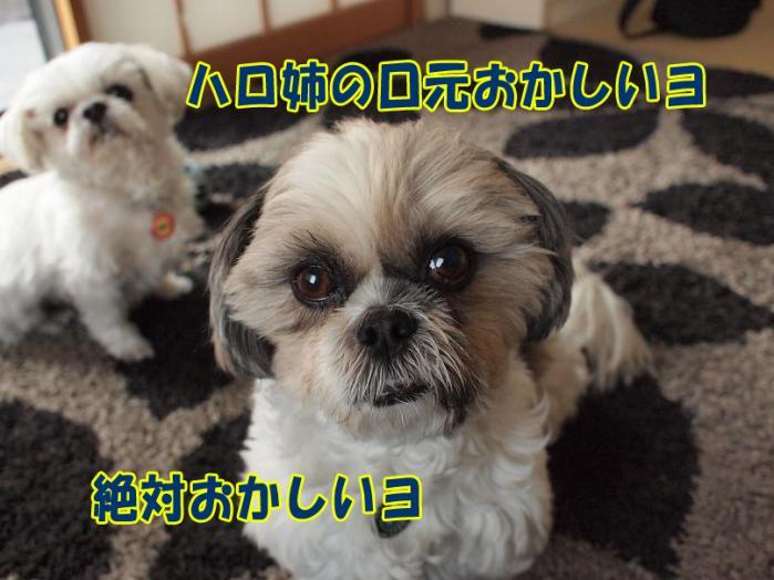 002_20110328172218.jpg