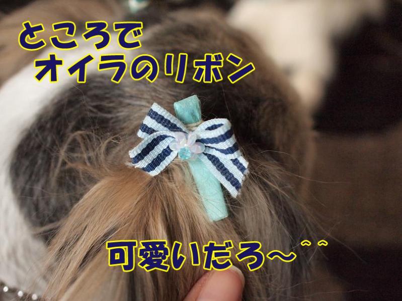 035_20110127183027.jpg