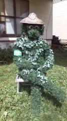 わたくし高山植物保護監視員です。