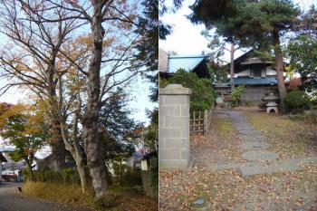 TATEOKA0611031.jpg