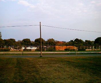 P1130006.jpg