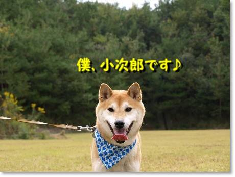 にん、小次郎君♪